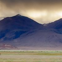 Mountain light Hanle