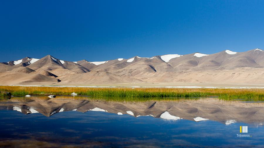 Ladakh Photography Workshop (Demo)
